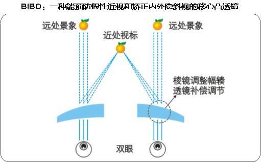 BIBO:一种能预防假性近视和矫正内外隐斜视的移心凸透镜原理与万新CME减负镜相同! - BIBO - 碧波眼镜工作室